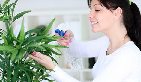 moça regando planta